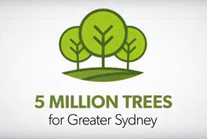 5 Million Trees graphic