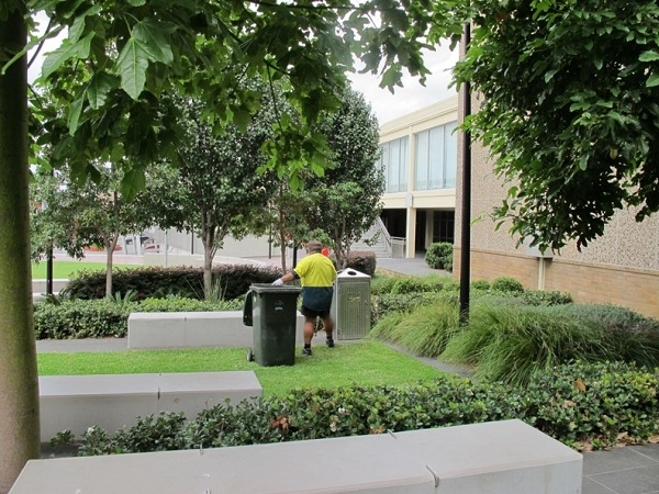 Blacktown Council officer maintaining local green spaces.