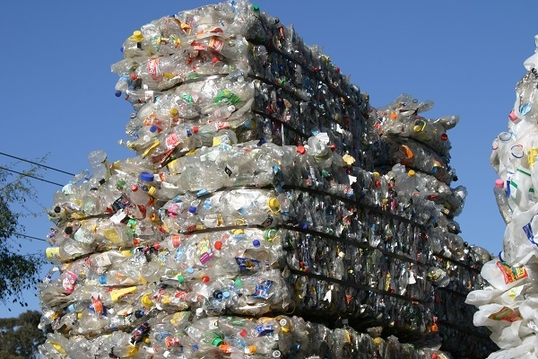 Plastic bottles stacked and ready for recycling.